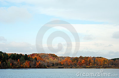 Fall colored trees by a lake
