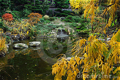 Fall Colors Japanese Garden