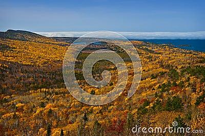Fall Colors, Mountain View, Michigan