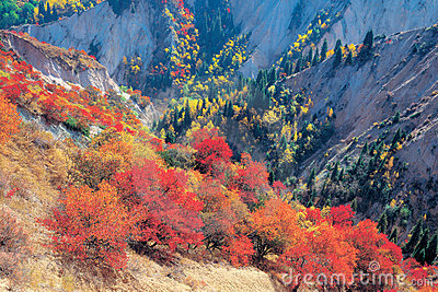 Fall colors of mountains