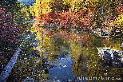Fall Colors Rocks Wenatchee River Washington