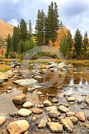 Fall Colors in the Sierra Mountains California