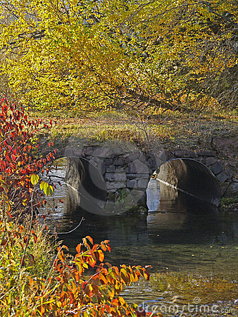Fall Colors, stream and culverts