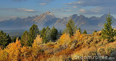 Fall Colors, The Tetons