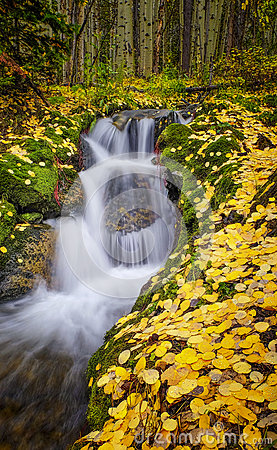 Free Fall Colors, Waterfall, Colorado Stock Photo - 60507750