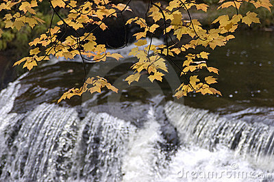 Fall Colors, Waterfall, Scenic Landscape