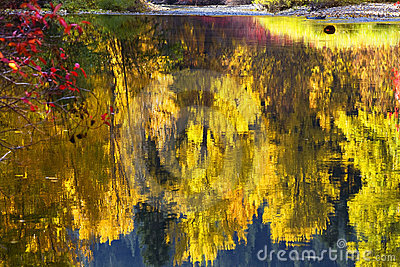 Fall Colors Wenatchee River Relections