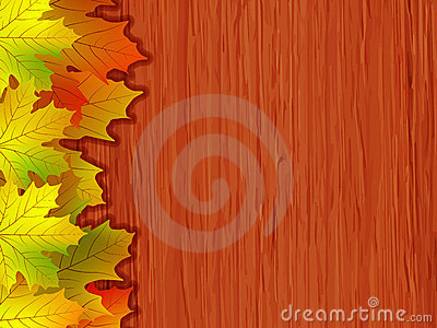 Fall coloured leaves. EPS 8  file included