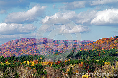 Fall Colours in Lee, Mass
