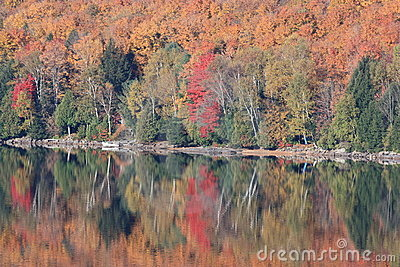 Fall Colours reflecting over calm lake in Ontario