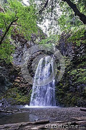 Free Fall Creek Falls, Oregon Stock Image - 42894421