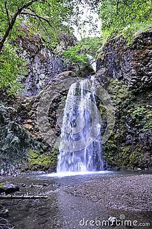 Free Fall Creek Falls, Oregon Stock Photos - 42894423
