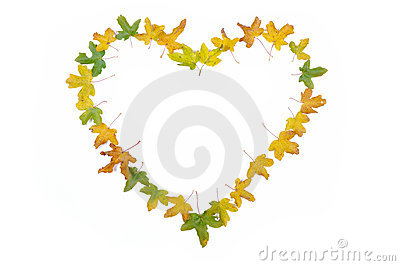 Fall details, leaves isolated in shape of heart an