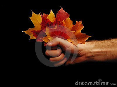 Fall fistful