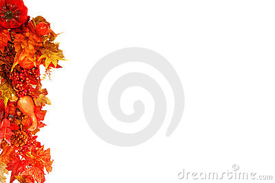 Fall foliage background