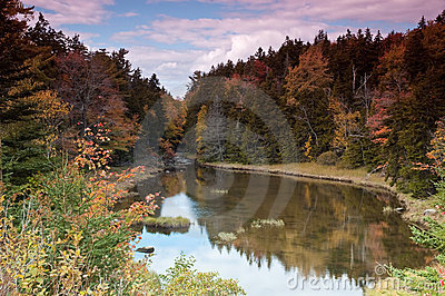 Fall Foliage in Maine, forest and a lake
