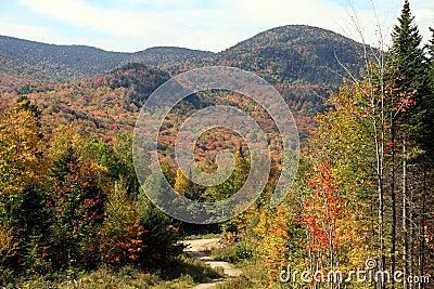 Fall Foliage in New Hampshire