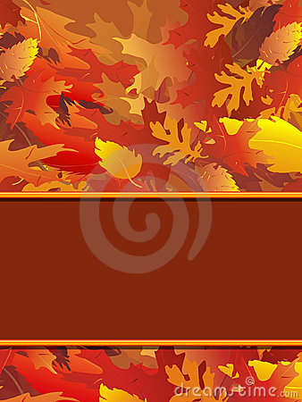 Free Fall Foliage Notecard Stock Image - 3622701
