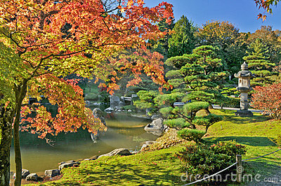 Fall Foliage and Pond in Japanese Garden