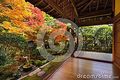 Fall Foliage in Ryoan-ji Temple in Kyoto