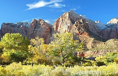 Fall Foliage, Zion