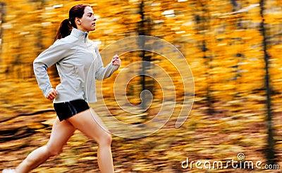 Fall Forest Runner