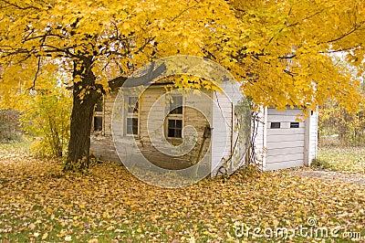 Fall Garage Scene