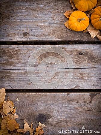 Free Fall Harvest Background Stock Image - 27034991