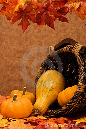 Free Fall Harvest Frame Royalty Free Stock Images - 6377499