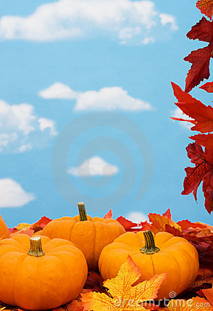 Free Fall Harvest Frame Royalty Free Stock Image - 6435096