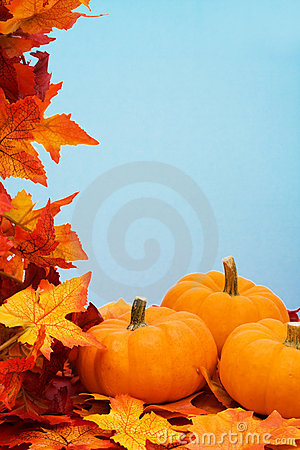 Free Fall Harvest Frame Royalty Free Stock Image - 6455816