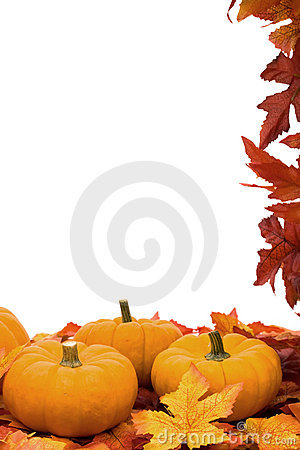 Free Fall Harvest Frame Stock Image - 6514541