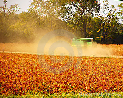 Fall Harvest Time