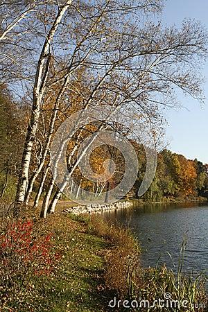 Fall at Hidden Lake Gardens