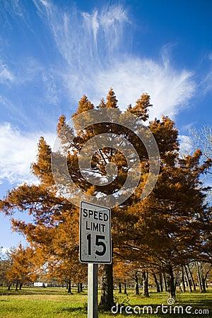 Fall in Kansas