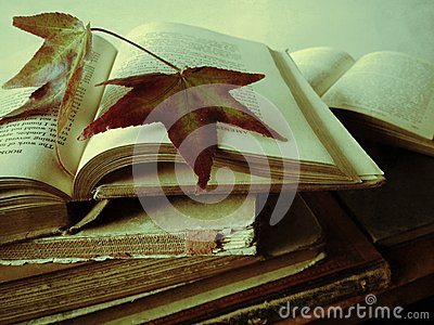 Fall leaves on books