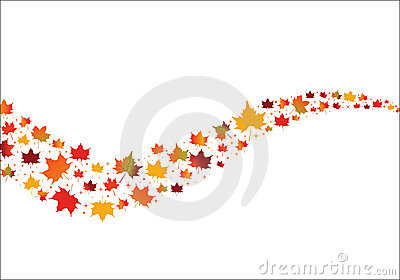 Fall Maple Leaves in curves shape
