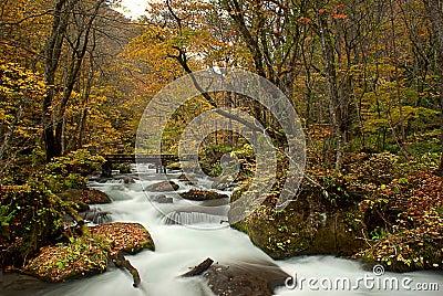 Fall of Oirase, Japan