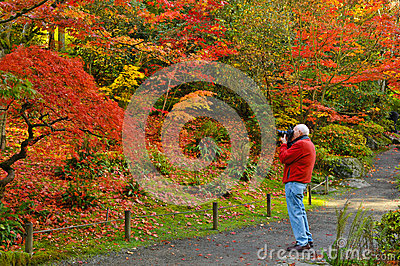 Fall Photography and Photographer