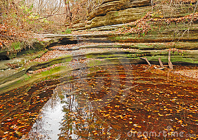 Fall pond scene in Illinois
