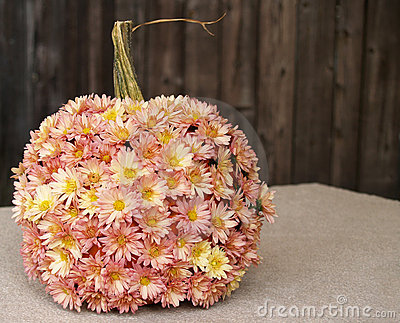 Fall pumpkin with mums