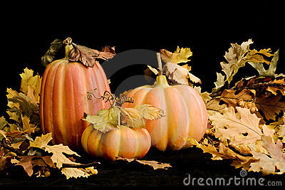 Fall Pumpkins & Leaves-horozontal