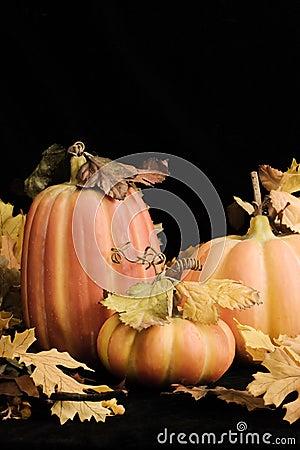 Fall Pumpkins - vertical
