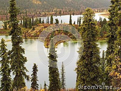 Fall rain on wilderness lake, Yukon T., Canada