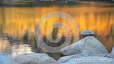Fall Reflection on Lake. A beautiful reflection of fall colors on a lake stock footage