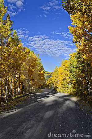 Free Fall Road On The Grand Mesa Royalty Free Stock Image - 21752726