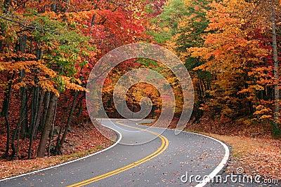 Fall S Curve