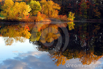 Fall Scene with Autumn Trees Reflection in Lake