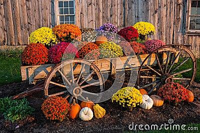 Fall Scene Stock Photo Image 46841918