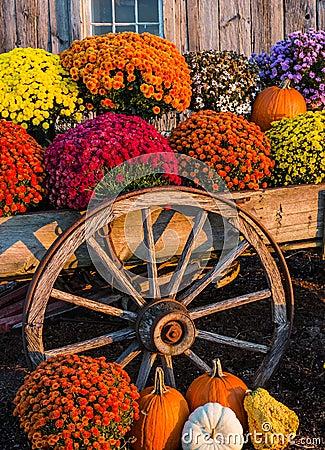 Fall Scene Stock Photo Image 46841926